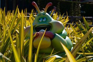 Disneyland jan-0017