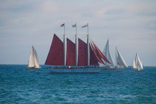 Tall Ships2-9