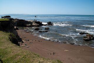 Avila Beach & Shell Beach-81